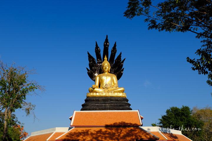 bouddha protégé par Mucalinda