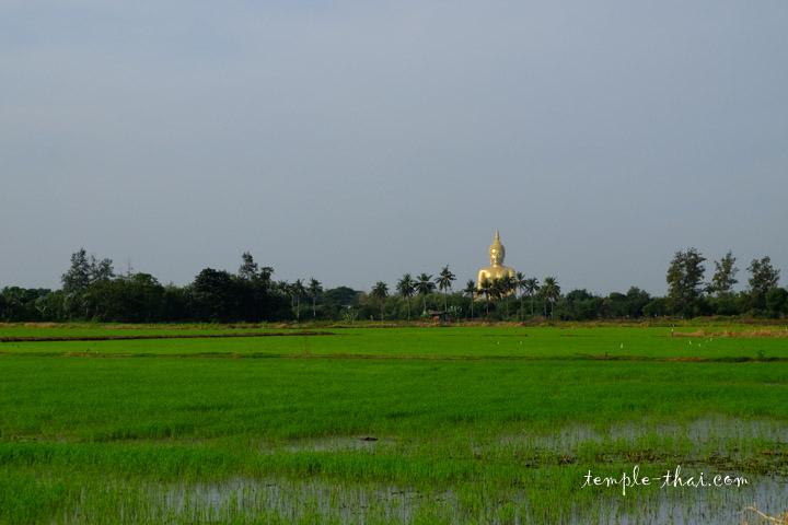 Le bouddha monumental s'aperçoit au loin