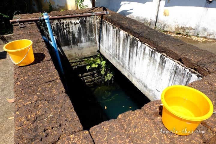 Le puits sacré (บ่อน้ำศักดิ์สิทธิ์)