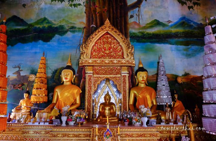 bouddhas alignés