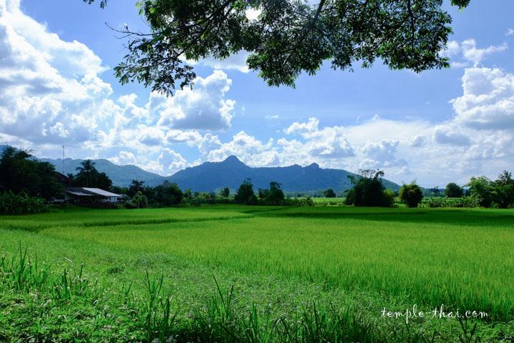 Paysage de la province de Loei