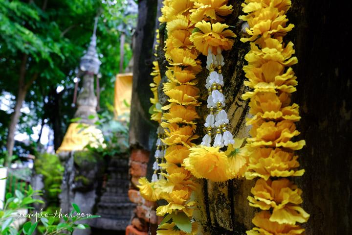 fleur sur le stupa